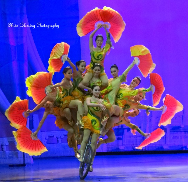 Bicycle Acrobats